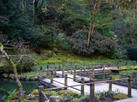 Portland Japanese Garden I