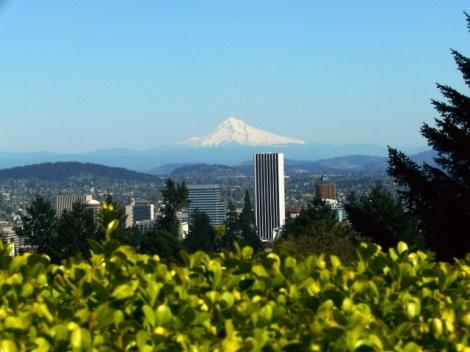 Portland Japanese Garden III